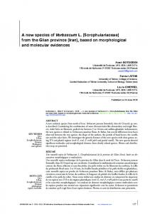 A new species of Verbascum L. (Scrophulariaceae) from the Gilan ...