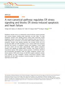 A non-canonical pathway regulates ER stress signaling and ... - Nature