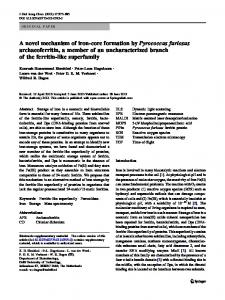 A novel mechanism of iron-core formation by ... - Springer Link