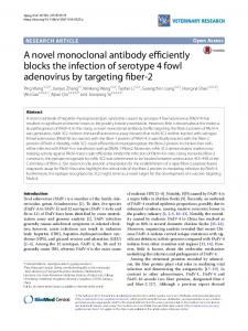 A novel monoclonal antibody efficiently blocks the infection of serotype ...
