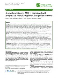 A novel mutation in TTC8 is associated with ... - Semantic Scholar
