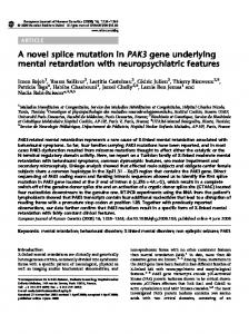 A novel splice mutation in PAK3 gene underlying mental ... - Nature
