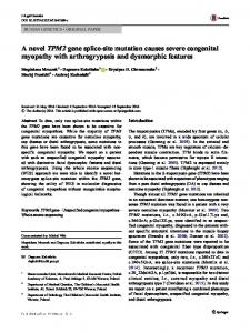 A novel TPM2 gene splice-site mutation causes severe congenital ...