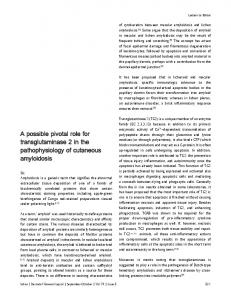 A possible pivotal role for transglutaminase 2 in the pathophysiology ...