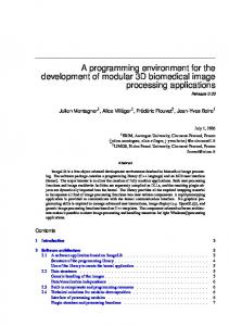 A programming environment for the development