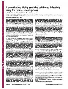 A quantitative, highly sensitive cell-based infectivity assay for mouse ...
