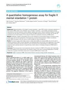 A quantitative homogeneous assay for fragile X mental ... - Springer Link