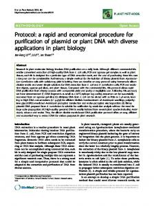 a rapid and economical procedure for purification of plasmid or plant ...