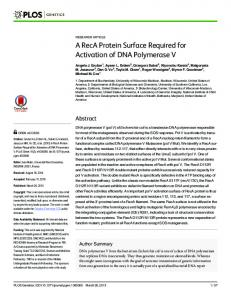 A RecA Protein Surface Required for Activation of DNA ... - PLOS