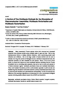 A Review of Two Multiscale Methods for the Simulation of