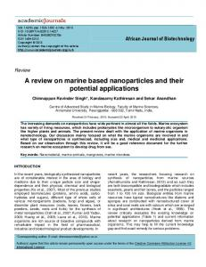 A review on marine based nanoparticles and their potential applications
