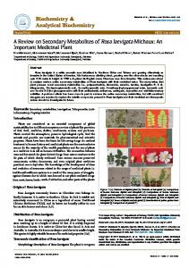 A Review on Secondary Metabolites of Rosa