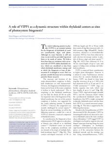 A role of VIPP1 as a dynamic structure within ... - BioMedSearch