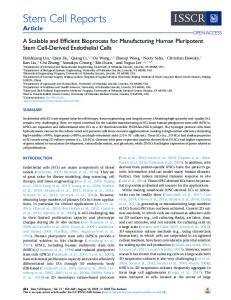A Scalable and Efficient Bioprocess for Manufacturing