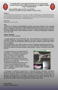 A Scottish Fold Cat Foreign Body Removal via ...