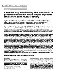 A sensitive assay for measuring SMN mRNA levels in ... - Nature