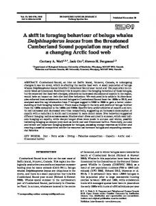 A shift in foraging behaviour of beluga whales ... - Inter Research