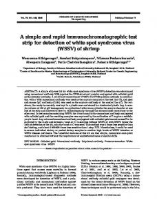A simple and rapid immunochromatographic test strip for detection of ...