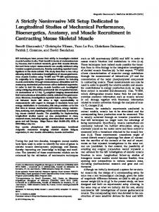A strictly noninvasive MR setup dedicated to ... - Wiley Online Library