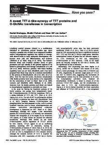 A sweet TETttesynergy of TET proteins and OGlcNAc transferase in ...