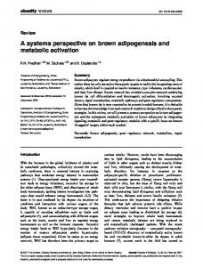 A systems perspective on brown adipogenesis ... - Wiley Online Library
