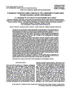 A temporary immersion system improves in vitro ... - Oxford Journals