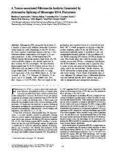 A Tumor-associated Fibronectin Isoform Generated ... - BioMedSearch