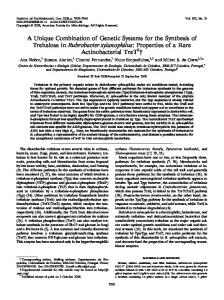 A Unique Combination of Genetic Systems for the Synthesis of ...