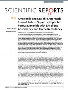 A Versatile and Scalable Approach toward Robust ... - Semantic Scholar