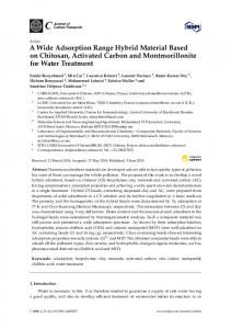 A Wide Adsorption Range Hybrid Material Based on Chitosan ... - MDPI