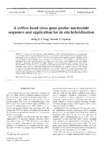 A yellow head virus gene probe: nucleotide sequence ... - Inter Research
