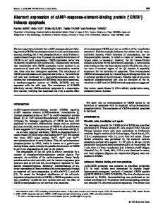 Aberrant expression of cAMP-response-element ... - Europe PMC