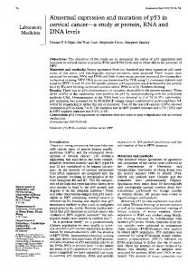 Abnormal expression and mutation of p53 in cervical ... - Europe PMC