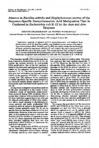 Absence in Bacillus subtilis and Staphylococcus aureus of the ...