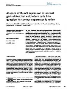 Absence of Runx3 expression in normal gastrointestinal epithelium ...