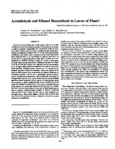 Acetaldehyde and Ethanol Biosynthesis in Leaves of Plants1 - NCBI