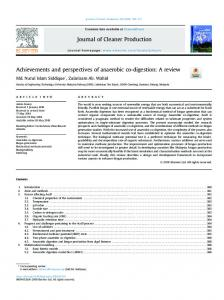 Achievements and perspectives of anaerobic co