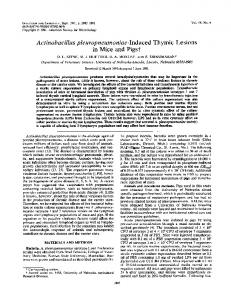 Actinobacillus pleuropneumoniae-Induced Thymic Lesions in ... - NCBI