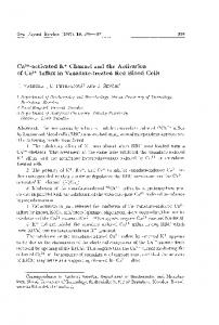 activated K+ Channel and the Activation of Ca2 + ... - Semantic Scholar