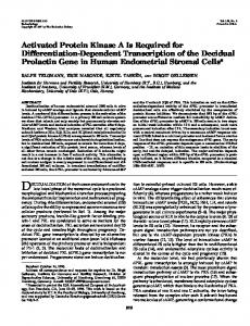 Activated Protein Kinase A Is Required for Differentiation ... - CiteSeerX