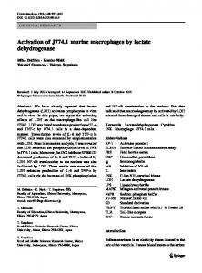 Activation of J774. 1 murine macrophages by lactate dehydrogenase