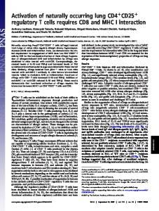 Activation of naturally occurring lung CD4 CD25 regulatory T cells ...