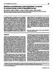 Activation of serine/threonine protein phosphatase-1 is required for ...