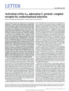Activation of the A2A adenosine G-protein-coupled receptor ... - Nature
