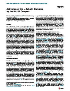 Activation of the γ-Tubulin Complex by the Mto1/2 ... - Cell Press