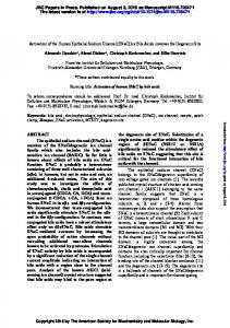 Activation of the human epithelial sodium channel ...
