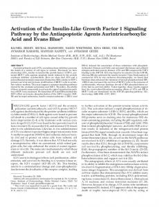 Activation of the Insulin-Like Growth Factor 1 Signaling Pathway by the ...