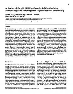 Activation of the p38 MAPK pathway by follicle-stimulating hormone ...