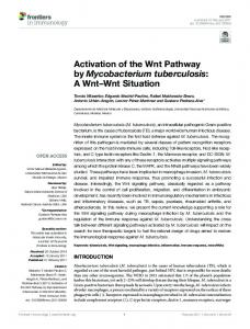 Activation of the Wnt Pathway by Mycobacterium tuberculosis: A ... - Core