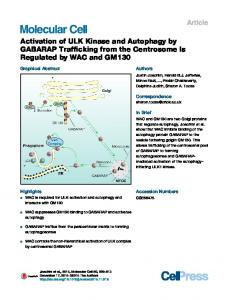Activation of ULK Kinase and Autophagy by GABARAP ... - Cell Press